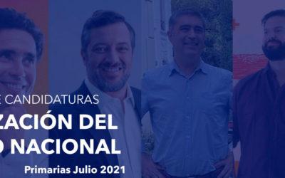 Análisis crítico de los programas presidenciales Chile Vamos y Apruebo Dignidad